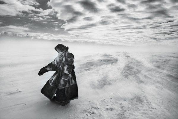 Il sale della Terra (2014)