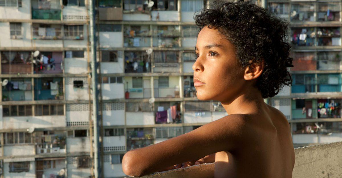 Pelo Malo (2013)