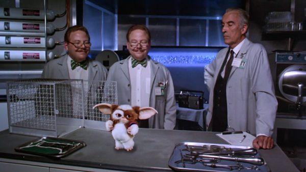 Gremlins 2 - La nuova stirpe (1990)