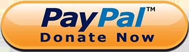 Pulsante donazione Paypal