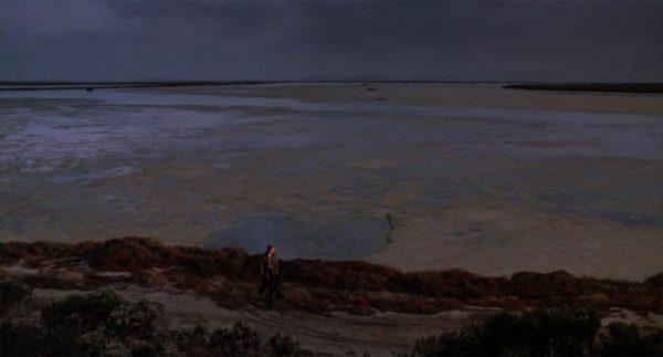 Doppia personalità (1992)